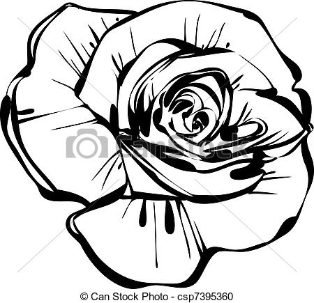 White Rose clipart sketch #2