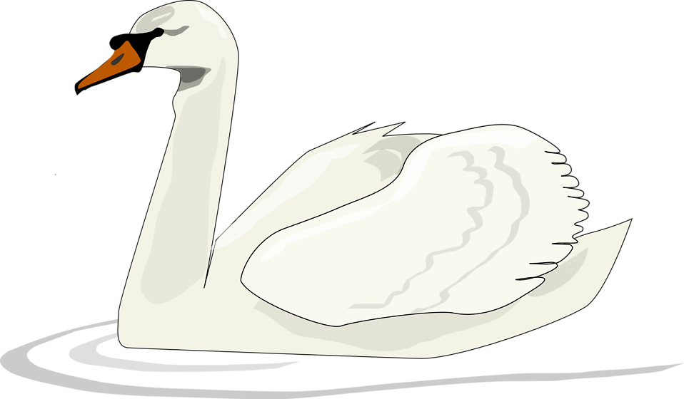 Illustration clipart swan Stock a Swan Free Photo