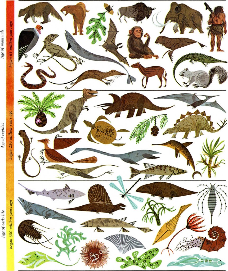 In The Desert clipart biology The Harper of Charley Gallery