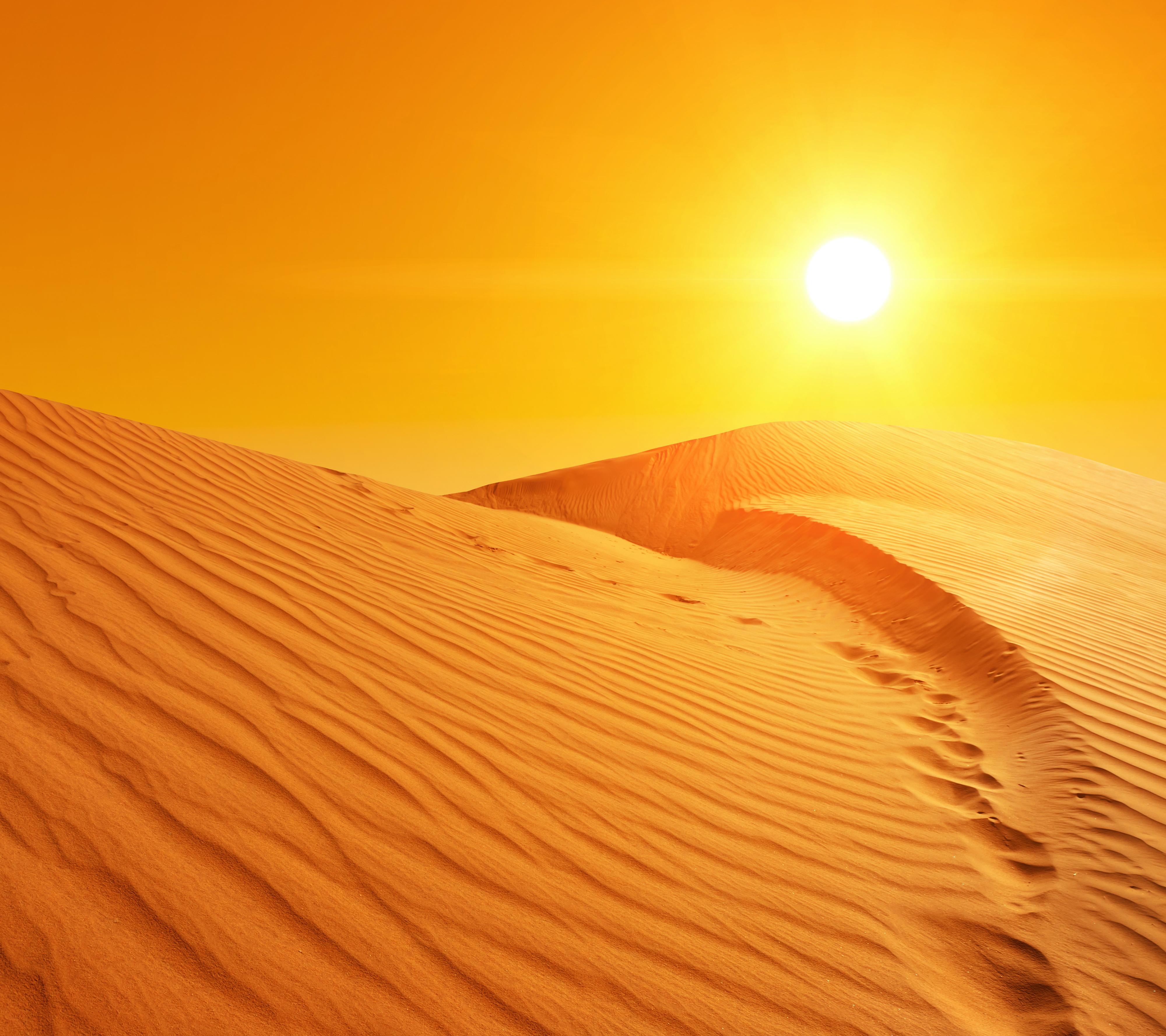 In The Desert clipart desert background Size  Background Quality Desert