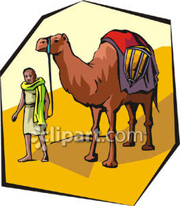 Camels clipart desert clipart With Desert Picture A Man