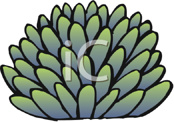 In The Desert clipart desert plant Cactus Free Royalty Clipart Plant