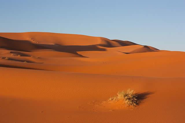 In The Desert clipart desert sand 43 3 clipart Desert Desert