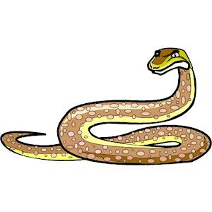In The Desert clipart desert snake Python (wmf download clipart Snake
