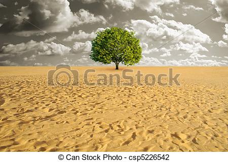 In The Desert clipart desertification Cactus; desertification Desertification;  Tree