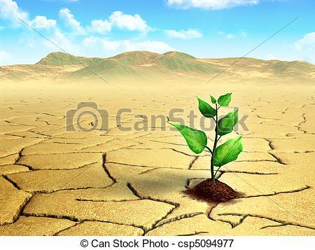 In The Desert clipart dry desert Csp5094977 Seedling desert in in