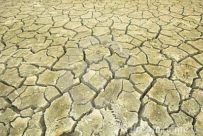 In The Desert clipart dry land (50+) land Desert Dry desert