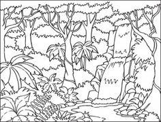 Drawn rainforest jungle safari The From a How Rainforest