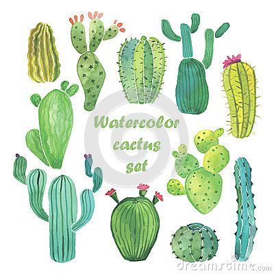 In The Desert clipart mexicano Cactus set images The Catus