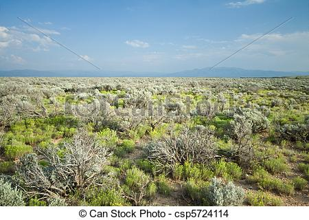 In The Desert clipart new mexico Stock New High Central Mexico