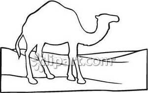 In The Desert clipart outline Outline Camel the In Picture