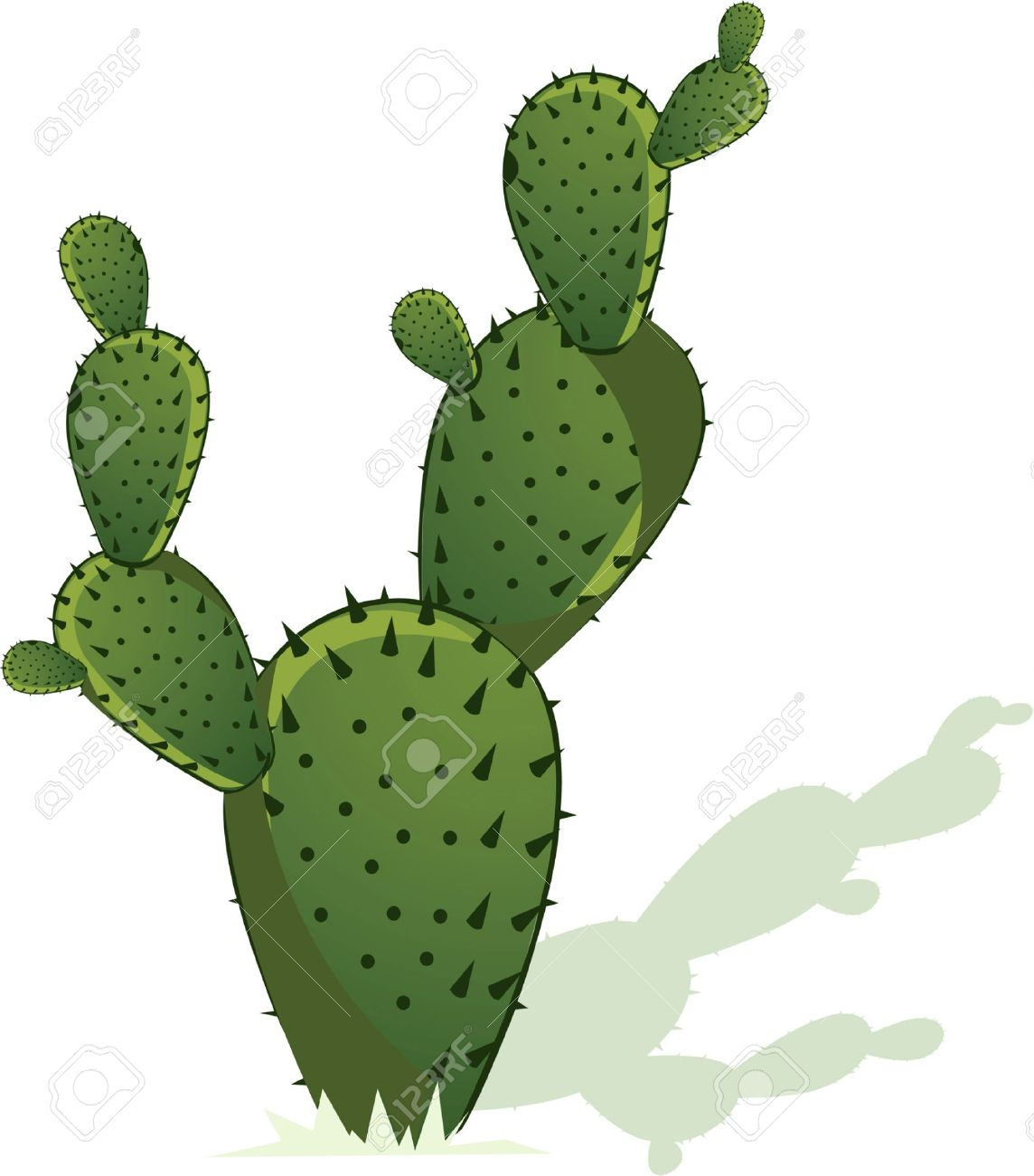 In The Desert clipart prickly pear cactus  Pinterest Oils Prickly cactus