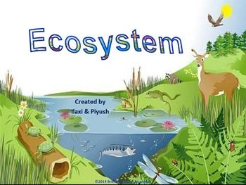 Wilderness clipart ecosystem Pinterest 25+ Ecosystem: Unit with