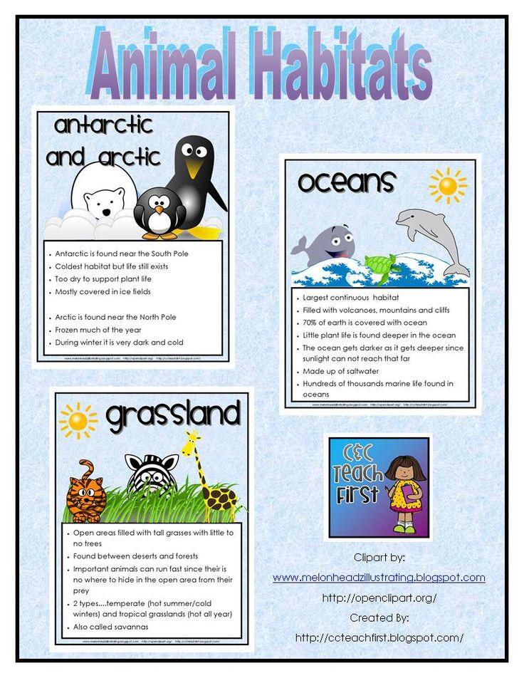 In The Desert clipart rainforest habitat Ideas the Pinterest Posters/Sheets Animal
