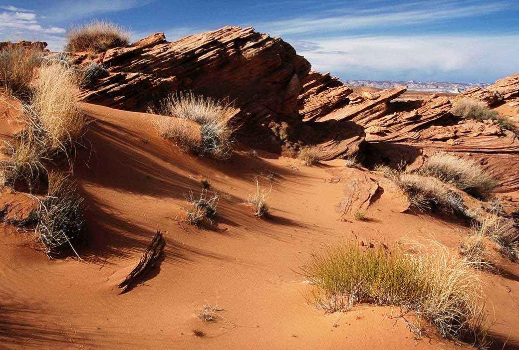 In The Desert clipart region Clip Where art With Desert?
