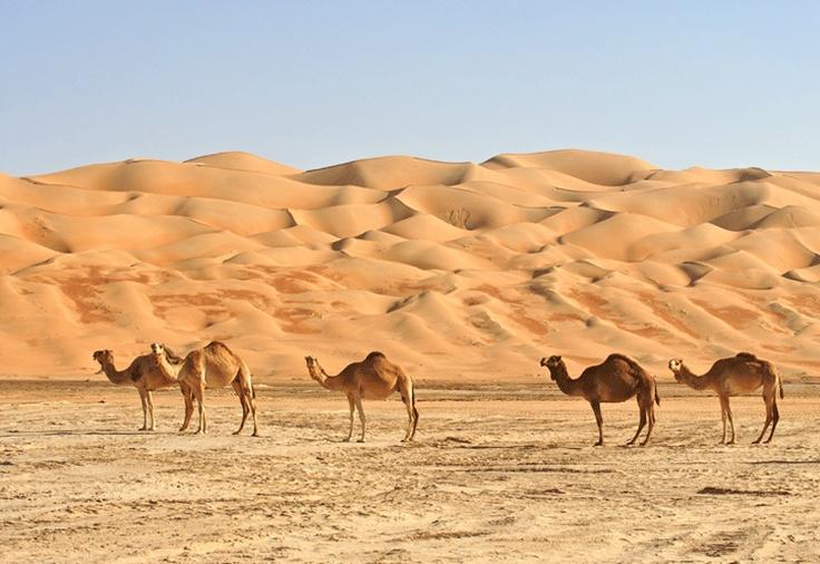 In The Desert clipart saudi arabia Http://www Google com for Result