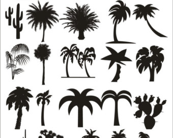 In The Desert clipart silhouette Desert Palm Drawing Tree Pack