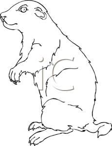 In The Desert clipart squirrel White Free Squirrel Clipart White