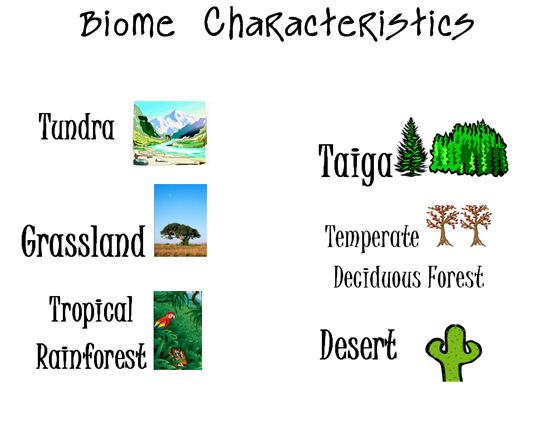 In The Desert clipart tundra biome Multiple Choice Choice Biome Characteristics