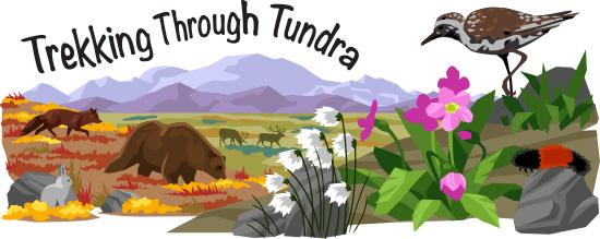 In The Desert clipart tundra biome Tundra biome Biologist image article