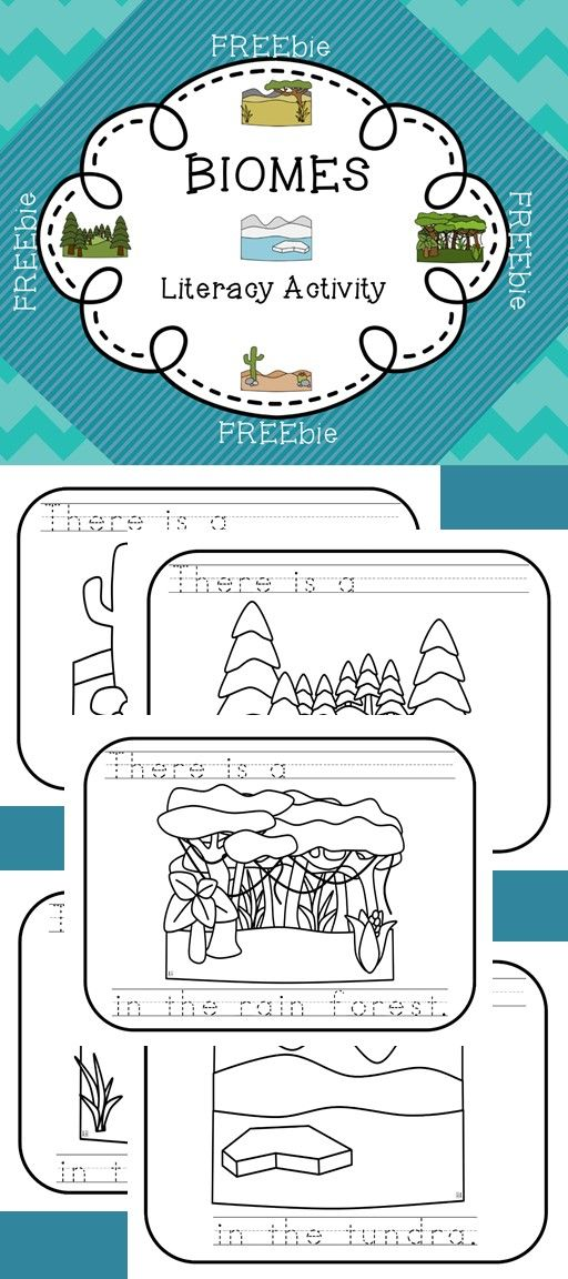 In The Desert clipart tundra biome Allows Pinterest know your animals