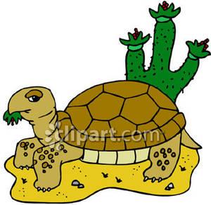 In The Desert clipart turtle Tortoise%20clipart Clipart Tortoise Clipart Panda