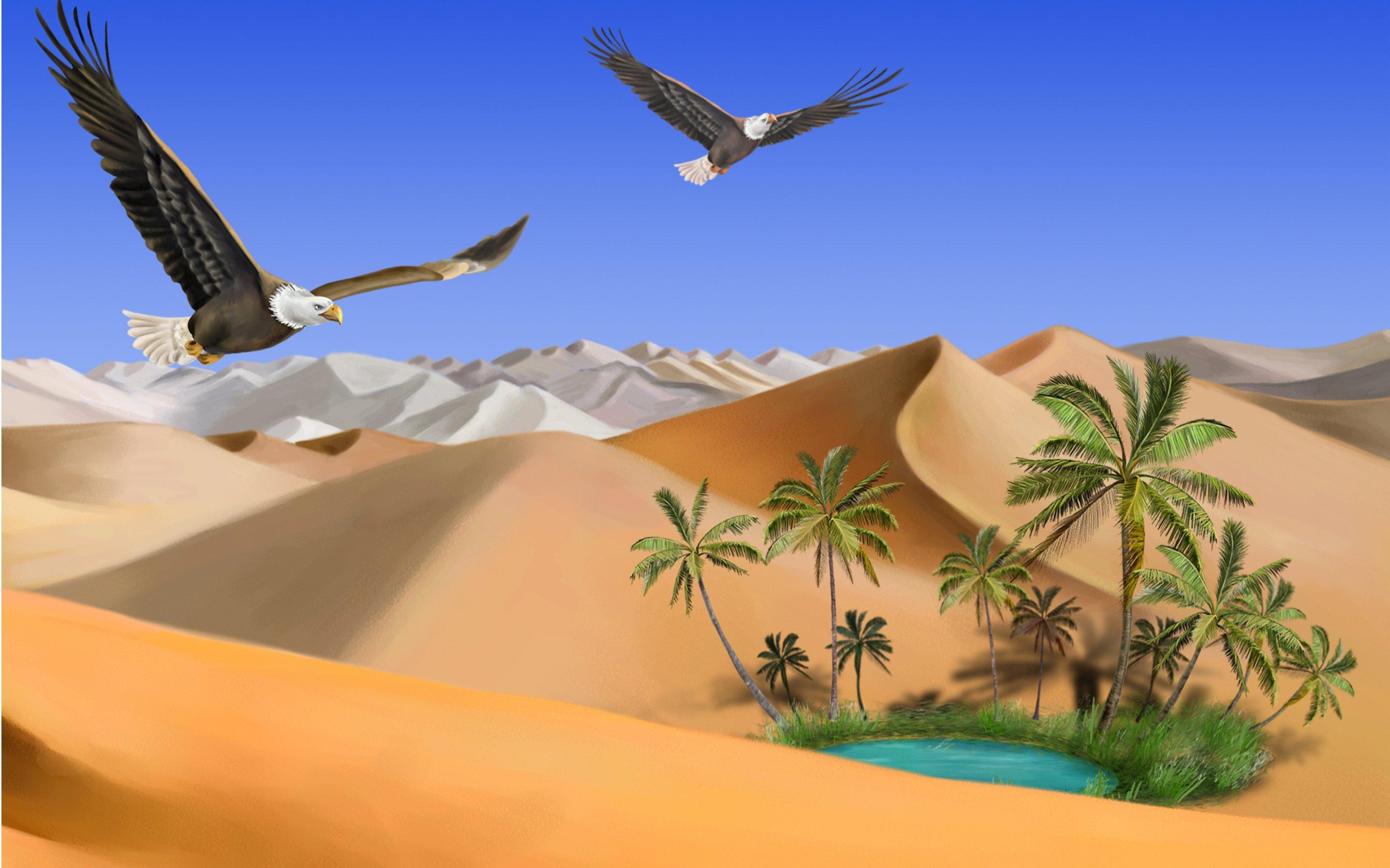 In The Desert clipart wallpaper – Oasis free download of