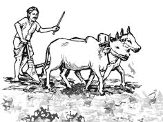 Cattle clipart indian farming #5