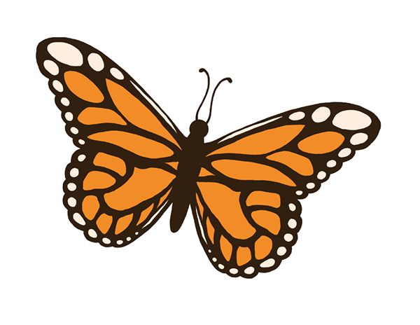 Insect clipart Made original vector Clip on