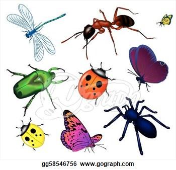 Insect clipart Clipart Clipart Clipart Clipart Free