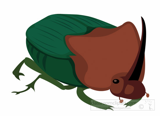 Insect clipart Illustrations Clip Clipart Clipart Free
