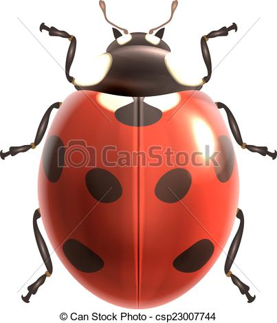 Bugs clipart realistic Realistic isolated realistic of Insect
