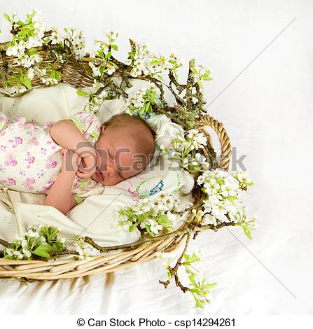 Inside clipart flower basket Inside flowers spring of with