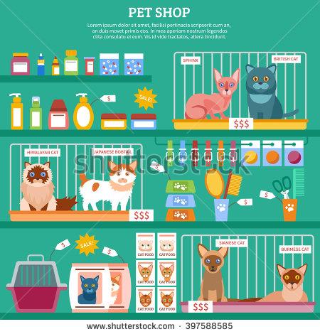 Inside clipart pet store Photos  & Free &