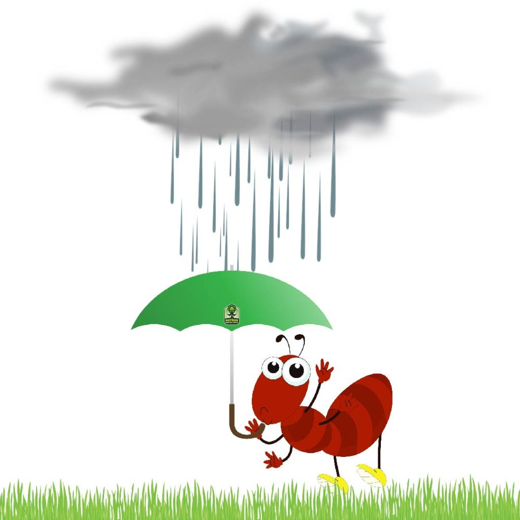 Inside clipart rainy day Blues down? Pest Day is