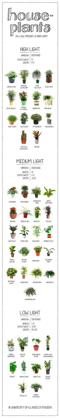 Interior Designs clipart garden cleaning Interiors details Home in Gardening