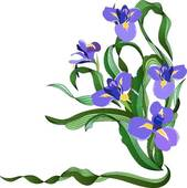 Iris clipart GoGraph Iris Free blue Art