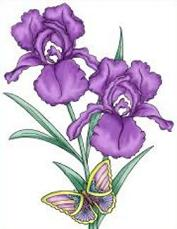 Iris clipart Iris Iris Clipart Free