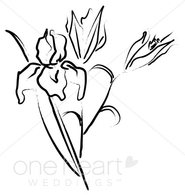 Iris clipart black and white #10
