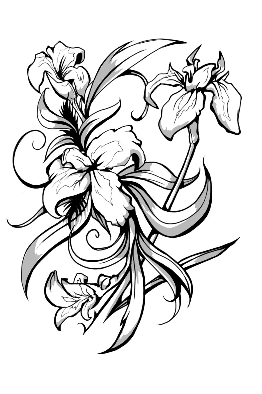 Iris clipart black and white #15