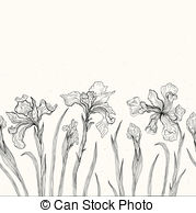 Iris clipart drawn And 381 EPS  Illustrations