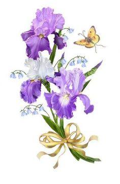 Purple Rose clipart iris FlowersVintage 132) free FLORES Paint