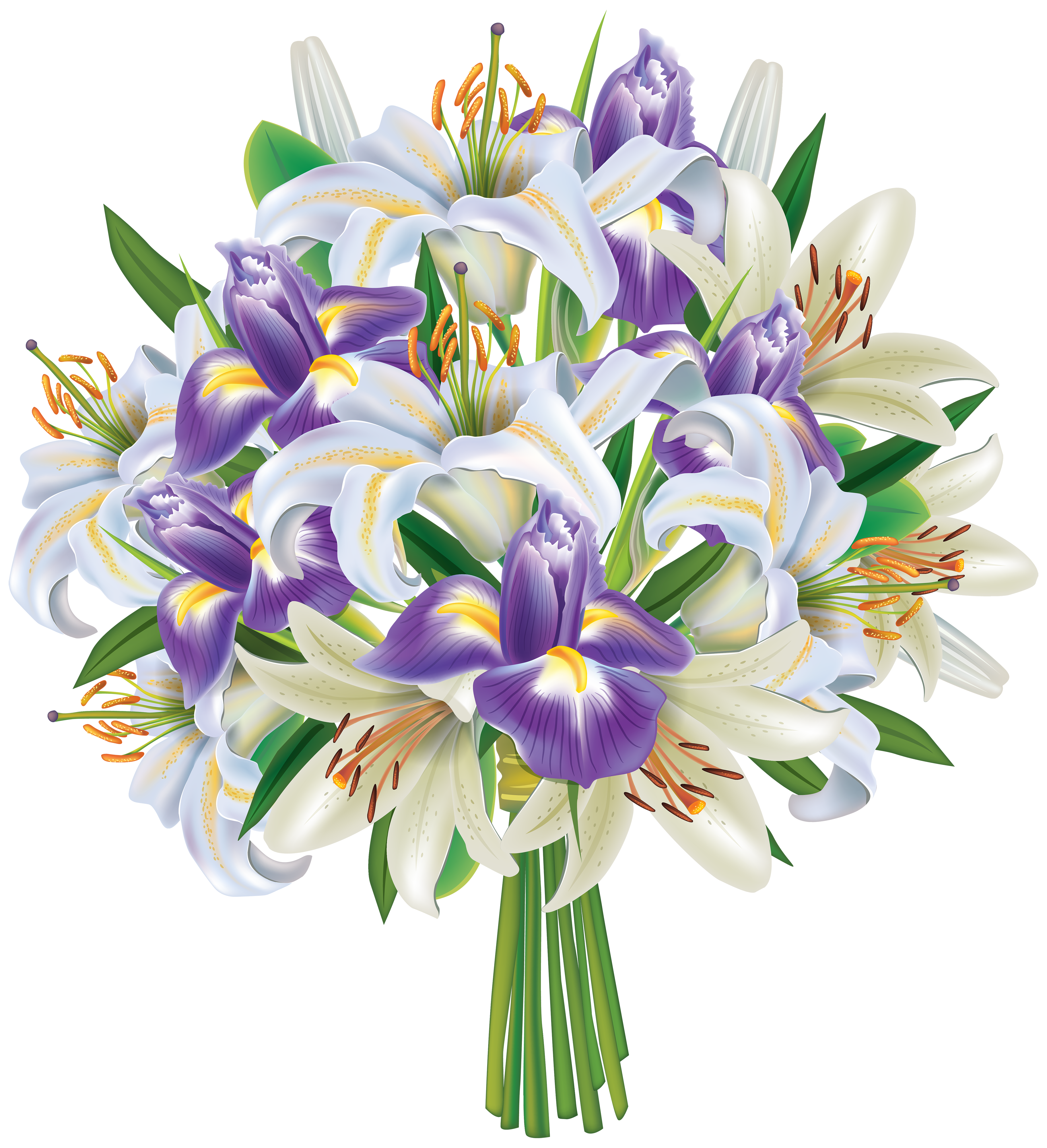 Purple Rose clipart iris Clipart PNG Lilies Purple and