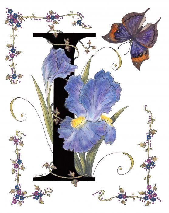 Iris clipart name Font Pinterest And Iris Stolen