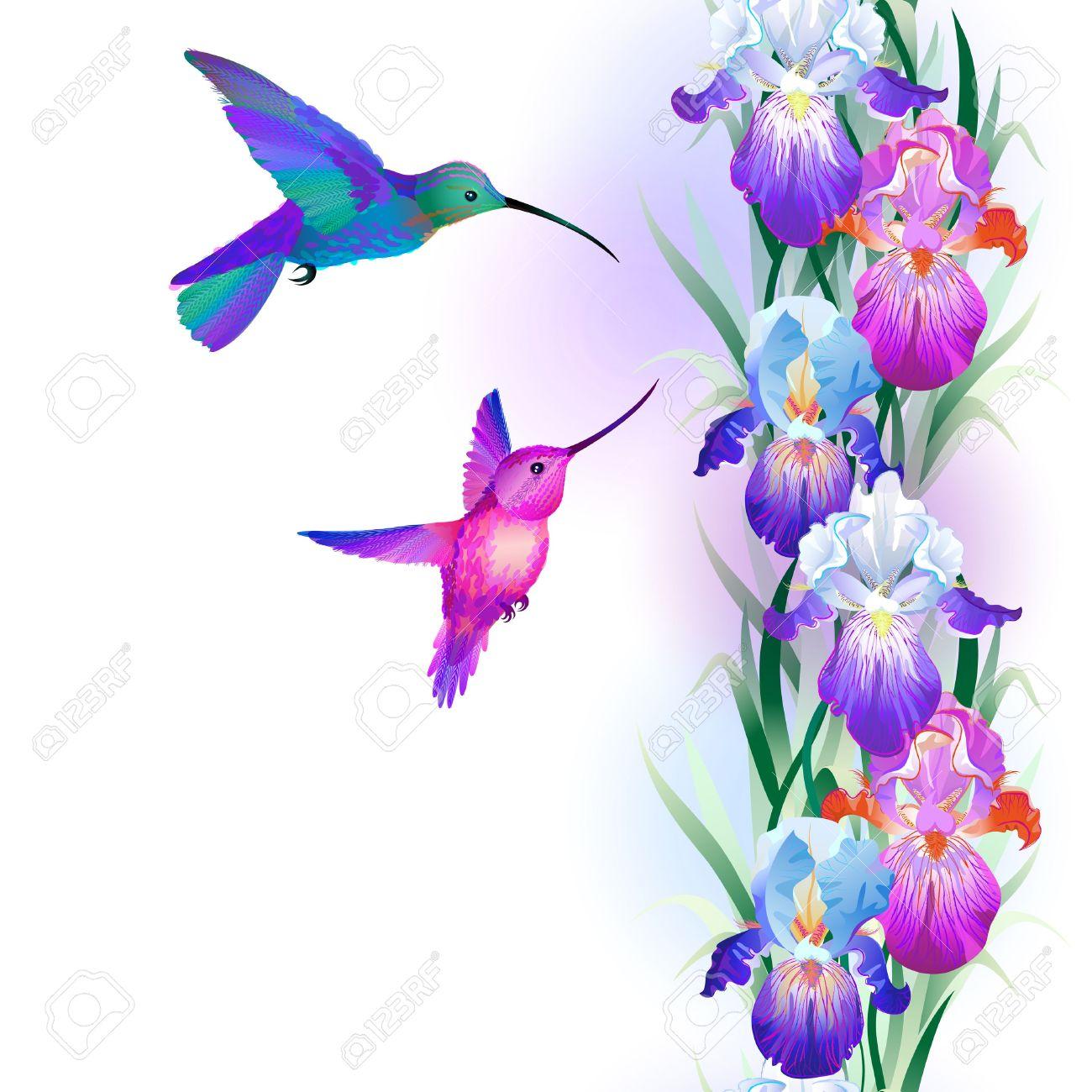 Iris clipart violet Clipart Iris iris #3 flower
