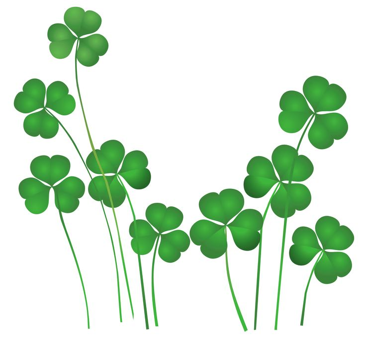 Clover clipart smooth thing Best St and Clip all