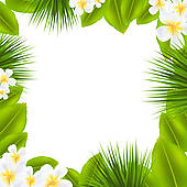 Frangipani clipart border Royalty Leaf With Tahiti palm