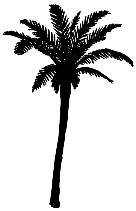 Islet clipart khajur Clipart clipart tree Palm internet