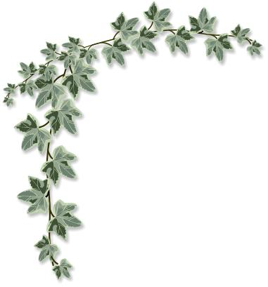 Ivy clipart Clipart Clipart Ivy Ivy Art