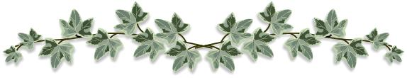 Ivy clipart Ivy  Clipart Brigitte by